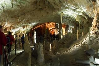 スロベニアのポストイナ鍾乳洞