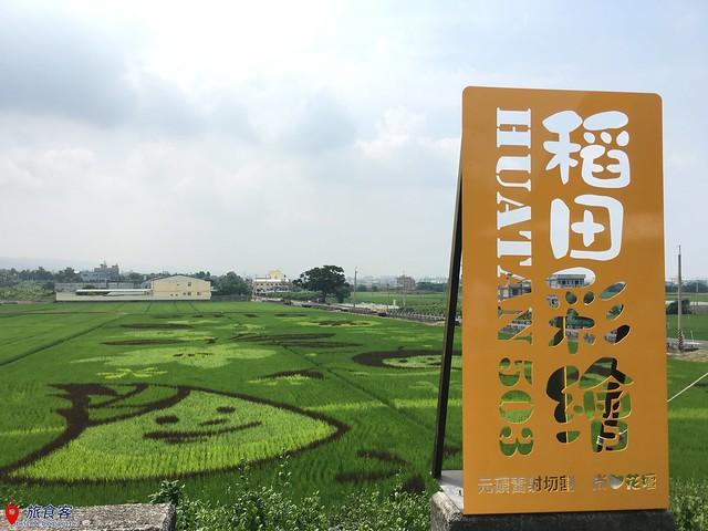 花壇彩繪稻田_022