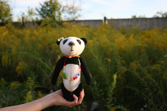 panda - girl