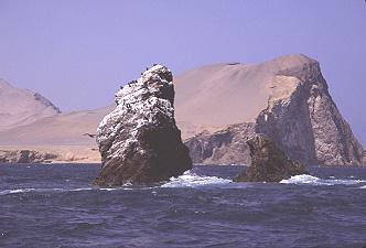 Sea kayaking in Paracas with Nature Expeditions (7)