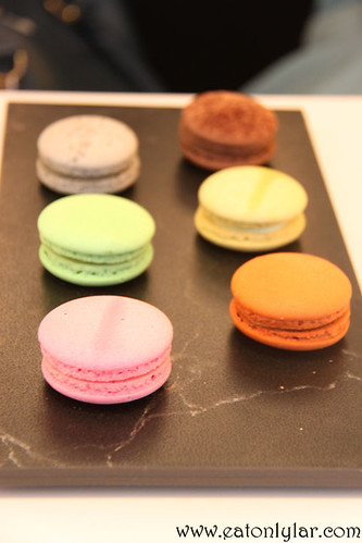 Macarons, Coffee Stain by Joseph