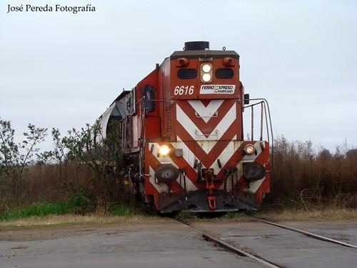 GR12 6616 ALICIA EN RUFINO.