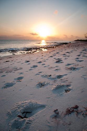 holiday sunrise tanzania daressalaam lazylagoon