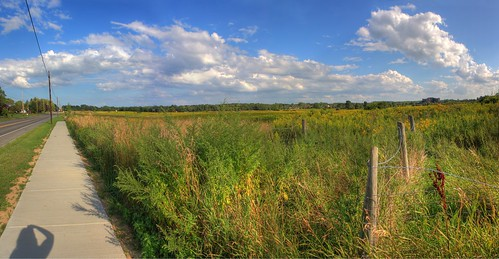 color grass farm fences wires hdr mysteries whodunit shadowontheground nocows