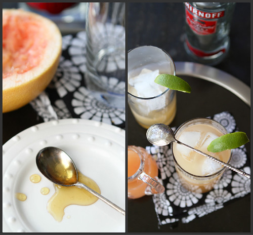 Pink Grapefruit Greyhound Cocktail Recipe