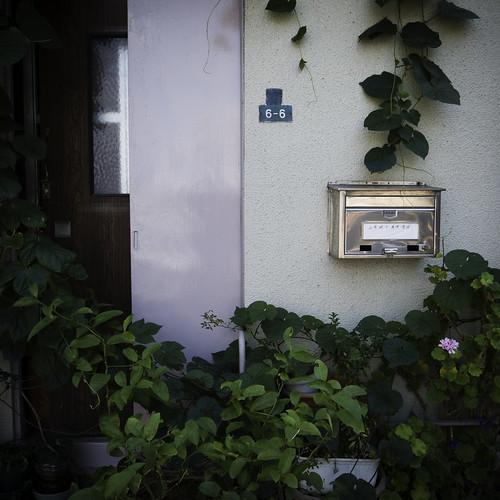 6-6 Garden Front Door