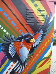 Calgary Street Art Walks