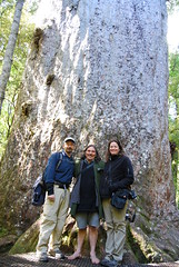 Jim, Kathy, and Stephen King in front of an ancient kauri tree