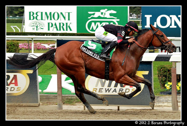 Awesome Feather Makes it 10 For 10 and wins $85,000 The Nasty Storm Stakes (4)