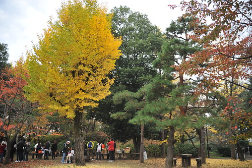After Japan trip 2011 - day 8. Nagano. Ueda.
