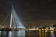 Erasmus Bridge from Behind 2, Rotterdam