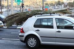 automobile(1.0), automotive exterior(1.0), wheel(1.0), vehicle(1.0), volkswagen golf variant(1.0), volkswagen golf mk4(1.0), city car(1.0), bumper(1.0), land vehicle(1.0), vehicle registration plate(1.0), hatchback(1.0), volkswagen golf(1.0),