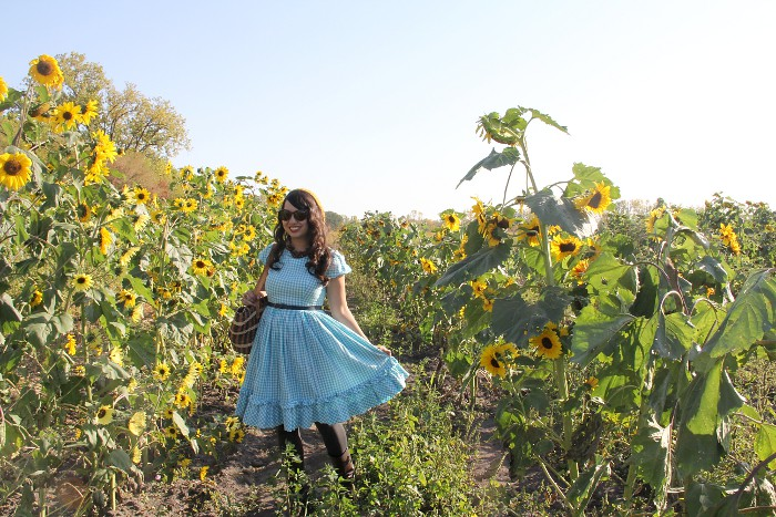 thriftaholic_sunflower_field_3