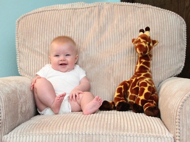 M vs Giraffe week 17
