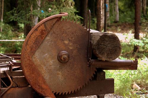 trees history metal alaska landscape log nikon antique rusty blade sawmill gaurd sawblade rebeak