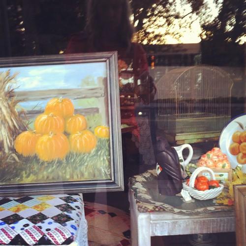 279/366 :: store window