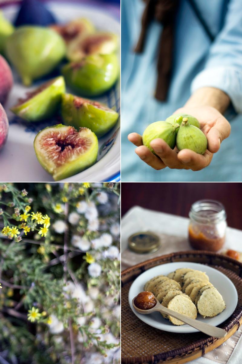 Bolachas de Parmesão e doce de figo