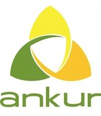 ankur copy