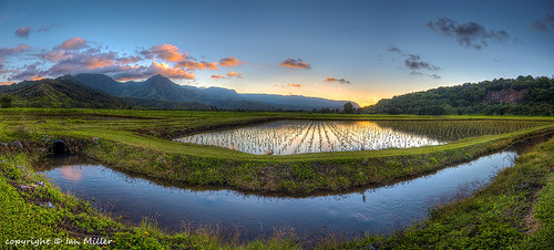 sunset panorama water landscape hawaii nikon scenery wildlife images kauai getty hdr hanalei d90