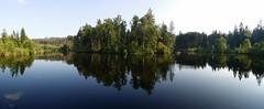 Černý rybník pod Děvínem
