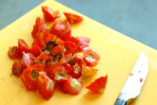 Pile of tomato cores by Eve Fox, Garden of Eating blog, copyright 2012