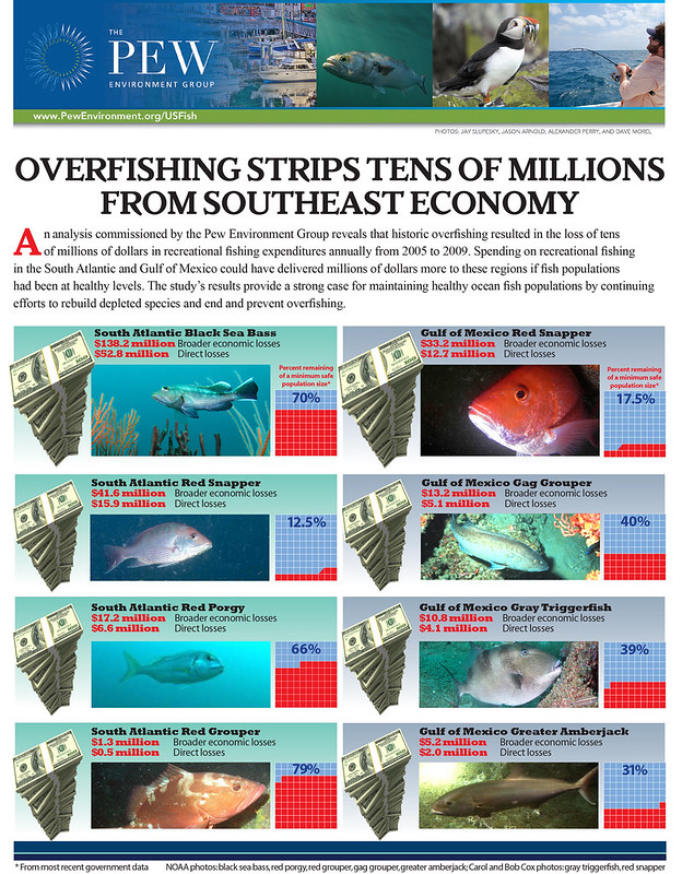 PEW: OVERFISHING STRIPS TENS OF MILLIONS FROM SOUTHEAST ECONOMY