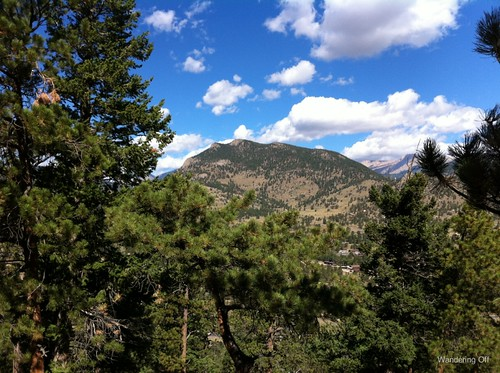 View from our horseback ride in Estes Park, CO
