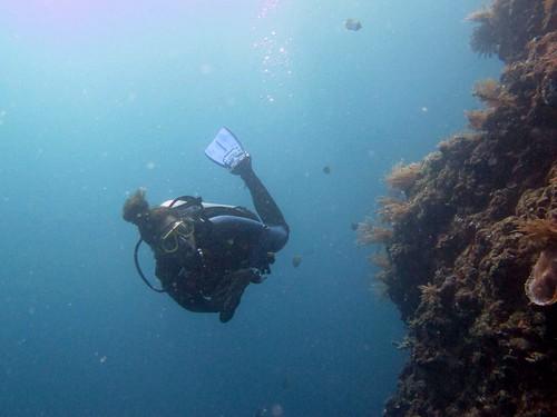 Tulamben Wreck - Bali