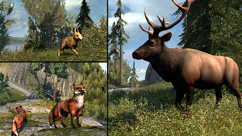 Assassin's Creed III on PS3: Animal Collage