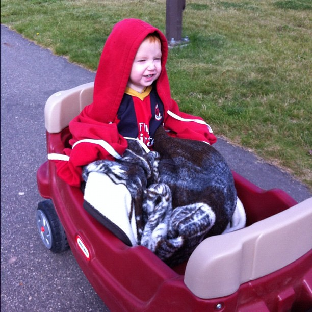 Preston's first wagon ride. He's house-sitting with Daddy, and his mother forgot to send a sweater with him. #badparenting