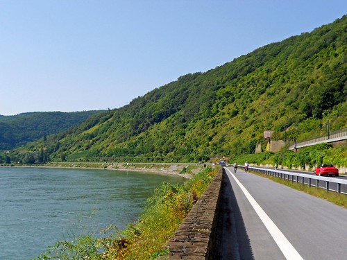 Path Along the Rhine
