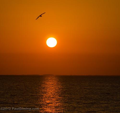 sunset landscape us spring unitedstates florida sunsets stgeorgeisland saintgeorgeisland stgeorgeislandflorida d7000 saintgeorgeislandflorida pauldiming stgeorgeisl photocontesttnc12 2012natureconservancy