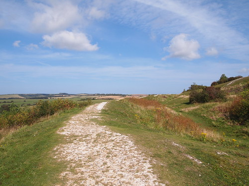 Chalk path (Cissbury ring)