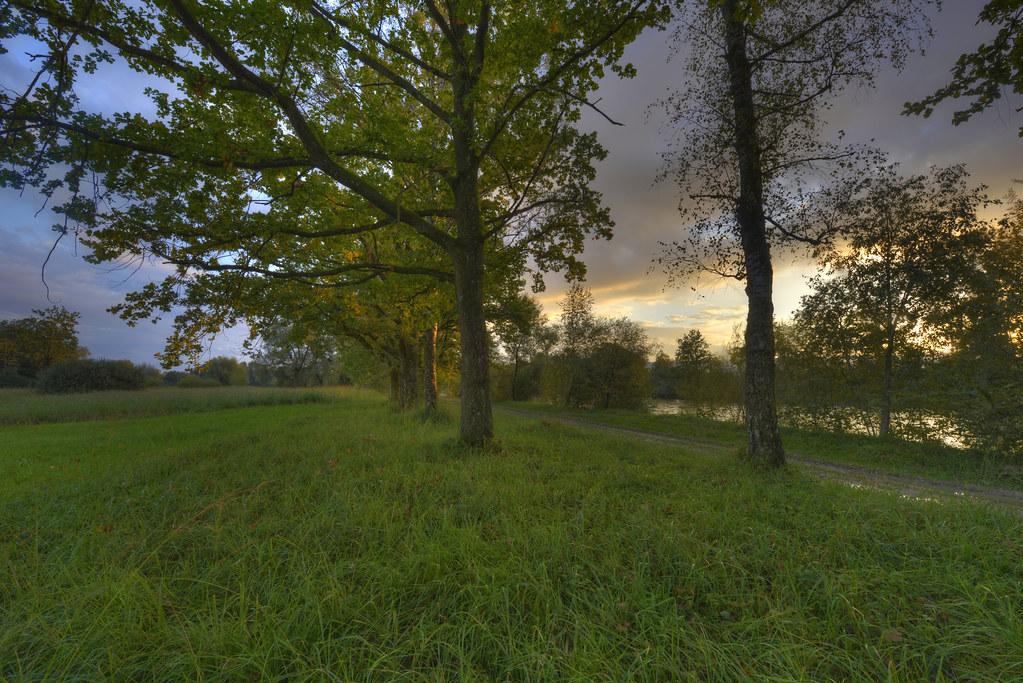 elevation of bremgarten, switzerland - maplogs,