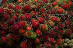 evergreen, rambutan, plant, produce, fruit, food,