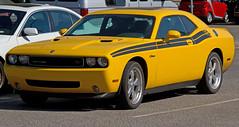 stock car racing(0.0), automobile(1.0), automotive exterior(1.0), dodge(1.0), wheel(1.0), vehicle(1.0), automotive design(1.0), dodge challenger(1.0), bumper(1.0), classic car(1.0), land vehicle(1.0), muscle car(1.0),