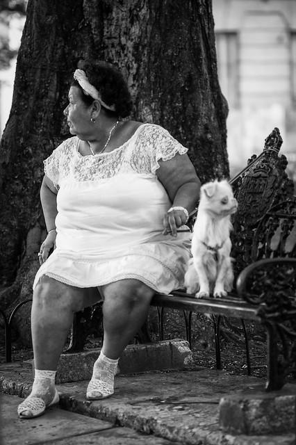 Where's my dog? (Havana, Cuba)