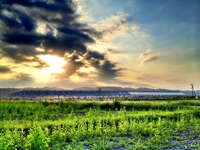 GRA稲実農場