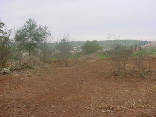 Juenga_Año 2002