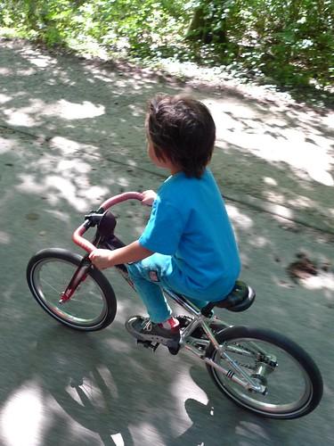 Aemstelhoeve bike camping trip 26