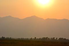 prairie, horizon, field, mountain, sunlight, sun, plain, evening, hill, morning, landscape, savanna, grassland, mist, sunset, sunrise,