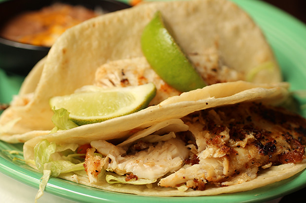 Fish Tacos, Don Pablo's, Sarasota, FL, Restaurant Review