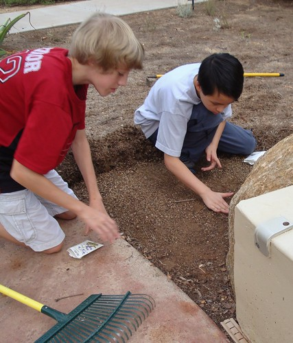 Ryan & Jonathan plant native wildflower seeds (California Poppy & Desert Bluebells) in anticipation of weekend rain.