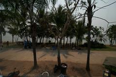 2012-02-29 3252a  Thailand