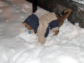 gunhee-snow7