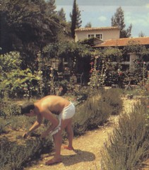 olney garden