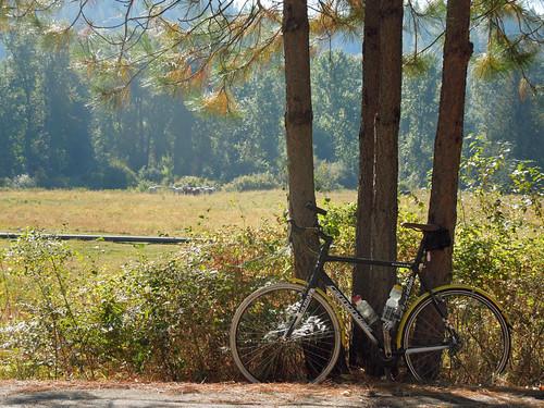 BikeVac120911c