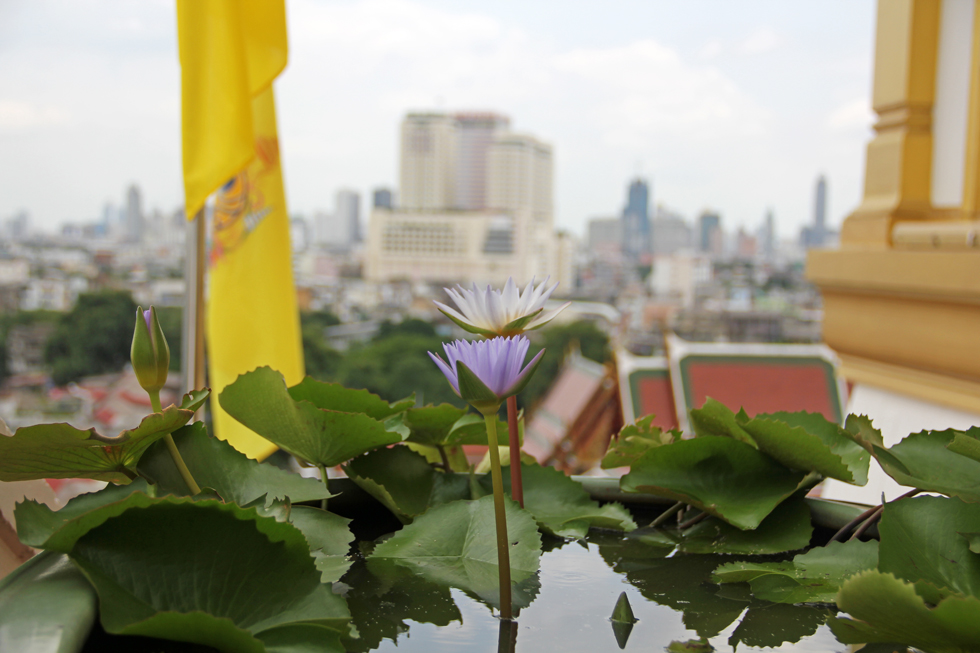 Lotus Planter at the top of Wat Saket
