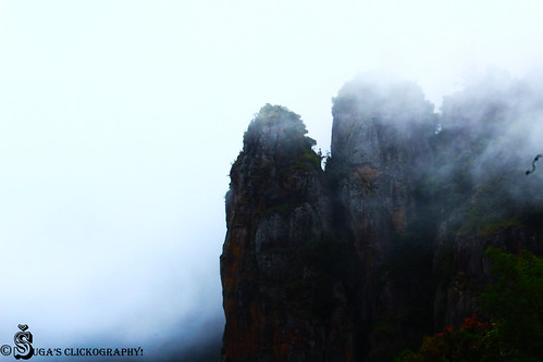Pillar Rock, kodaikanal