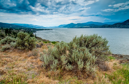 blue summer sky cloud sunlight mountain lake plant canada mountains color reflection nature water grass skyline clouds rural forest landscape outdoors coast pond bush scenery bc view desert natural cloudy outdoor okanagan scenic columbia calm hills shore valley coastline british kelowna relaxation tranquil cloudscape scenics naramata